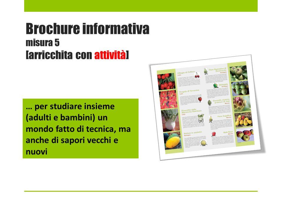 Brochure informativa misura 5 [arricchita con attività]